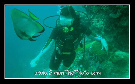 Xandra diving in Cebu