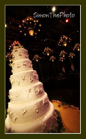 Wedding of Michelle & Tom 5